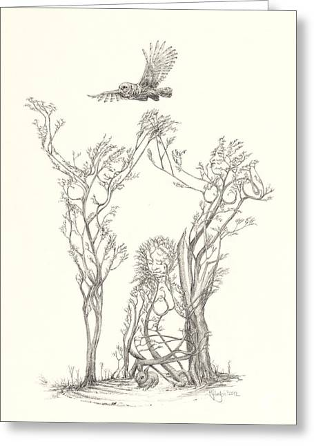 Gaia Drawings Greeting Cards - Gracious Haven Greeting Card by Mark Johnson