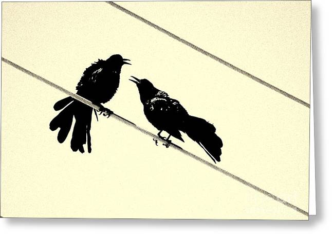 Photography Galleries On Line Greeting Cards - Grack Pecked Greeting Card by Joe Jake Pratt