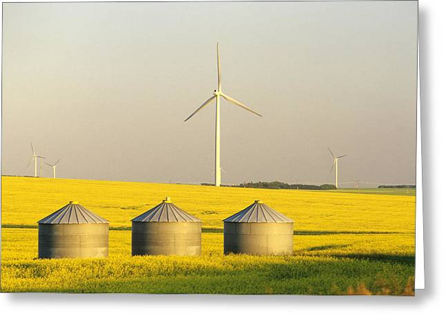 Jul08 Greeting Cards - Grain Bins And Wind Turbines In Canola Greeting Card by Dave Reede