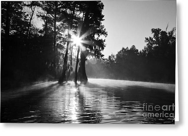 Swamp People Greeting Cards - Grand Bayou Morning Greeting Card by Scott Pellegrin