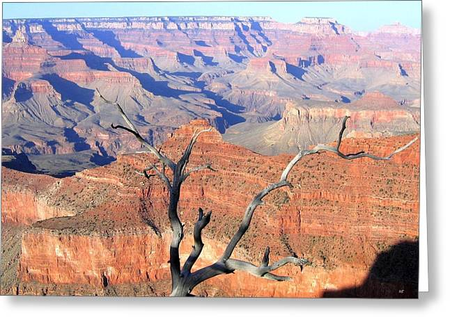 Grand Canyon 25 Greeting Card by Will Borden