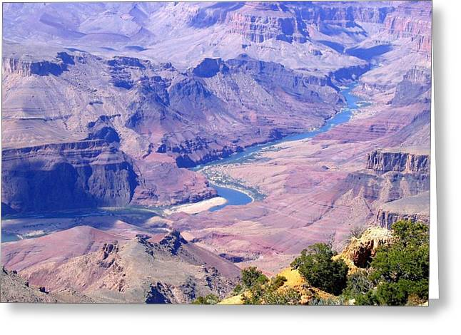 Grand Canyon 31 Greeting Card by Will Borden
