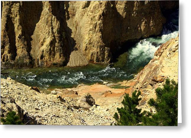 Marty Koch Greeting Cards - Grand Canyon of the Yellowstone 3 Greeting Card by Marty Koch