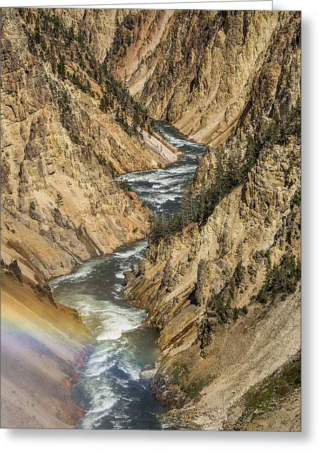 Grand Canyon Of The Yellowstone Greeting Cards - Grand Canyon of the Yellowstone and Rainbow Greeting Card by Greg Nyquist
