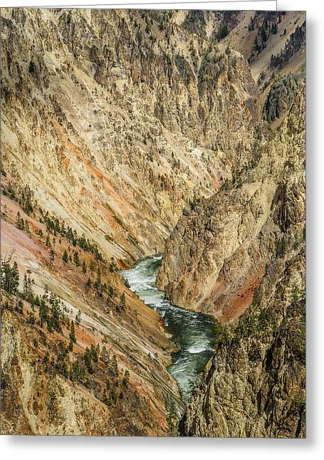 Grand Canyon Of The Yellowstone Greeting Cards - Grand Canyon of the Yellowstone Greeting Card by Greg Nyquist