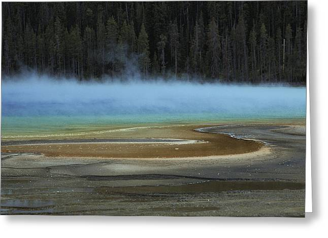 Spring Scenes Greeting Cards - Grand Prismatic Spring, Yellowstone Greeting Card by Raymond Gehman