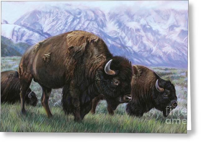 Blue Pastels Greeting Cards - Grand Teton Bison Greeting Card by Deb LaFogg-Docherty