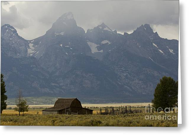 Old Barns Greeting Cards - Grand Tetons Jackson Wyoming Greeting Card by Dustin K Ryan