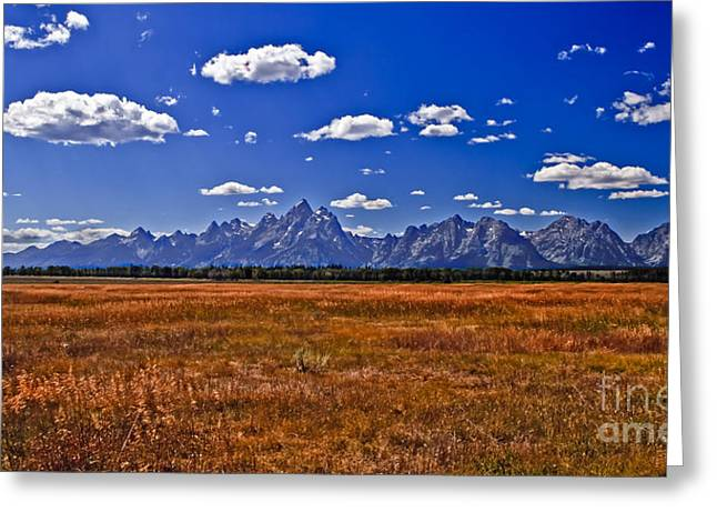 Outlook Greeting Cards - Grand Tetons  Mountains Greeting Card by Robert Bales