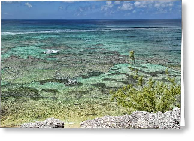 Grand Turk Island Greeting Cards - Grand Turk Beach Greeting Card by Joan  Minchak