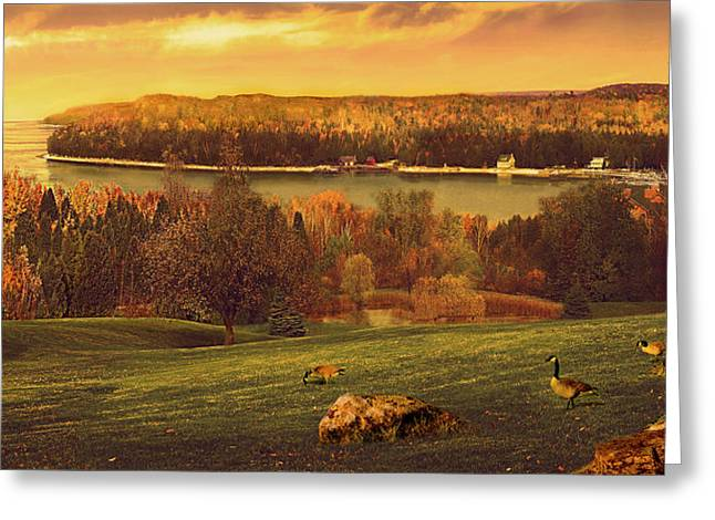 Grand View Greeting Card by Doug Kreuger