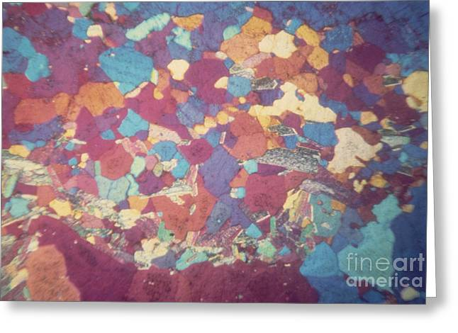 Micrography Greeting Cards - Granite Lm Greeting Card by Eric V. Grave
