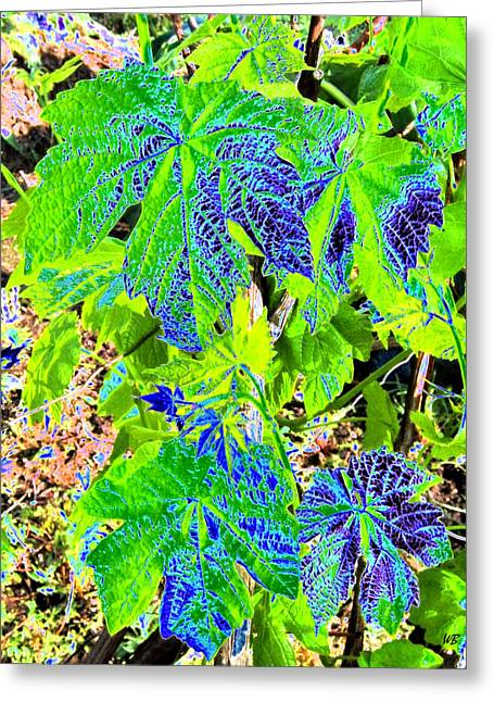 Grape Leaves Digital Art Greeting Cards - Grape Leaves Greeting Card by Will Borden