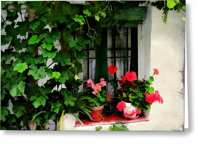 Grape Vines An Geraniums Frame A Window Greeting Card by Elaine Plesser