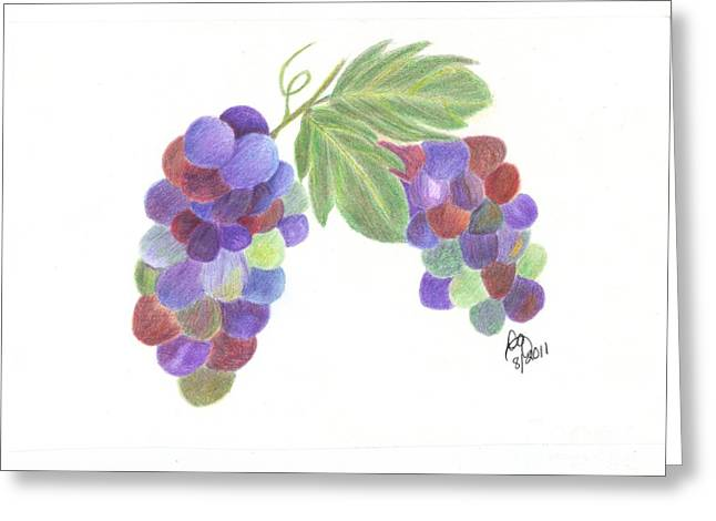 Blue Grapes Drawings Greeting Cards - Grapes Greeting Card by DebiJeen Pencils