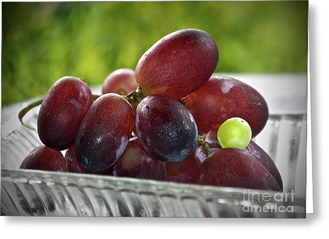 Grapes Greeting Card by Gwyn Newcombe
