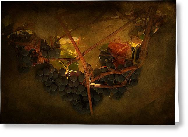 Grapes Greeting Card by Peter Labrosse