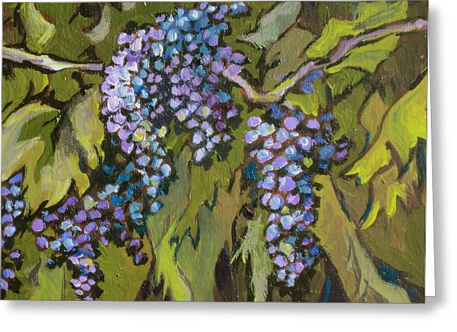 Grapevines Greeting Cards - Grapevine Greeting Card by Sandy Tracey