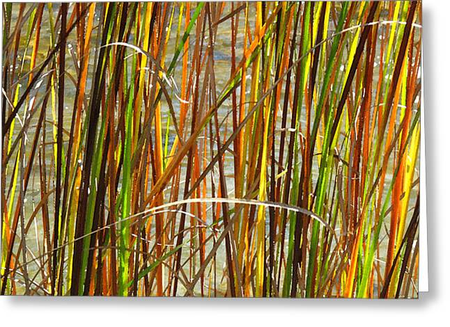 Autum Abstract Greeting Cards - Grass by the Water WC 2  Greeting Card by Lyle Crump