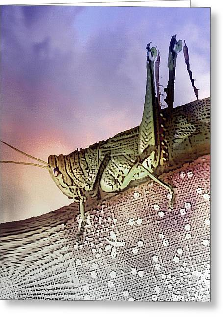 Visionary Artist Greeting Cards - Grasshopper Greeting Card by George  Page