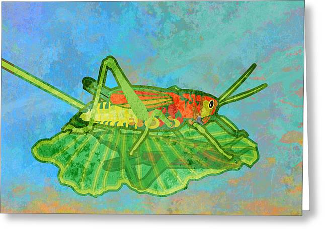 Ogling Greeting Cards - Grasshopper Greeting Card by Mary Ogle