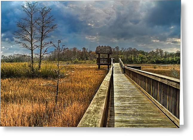 Thatch Greeting Cards - Grassy Glades Greeting Card by Debra and Dave Vanderlaan
