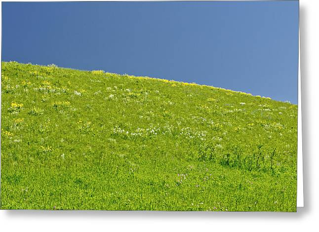 Grassy Slope View Greeting Card by Roderick Bley