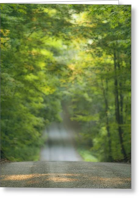 Gravel Road Greeting Cards - Gravel Road, Niagara Region, Pelham Greeting Card by Darwin Wiggett