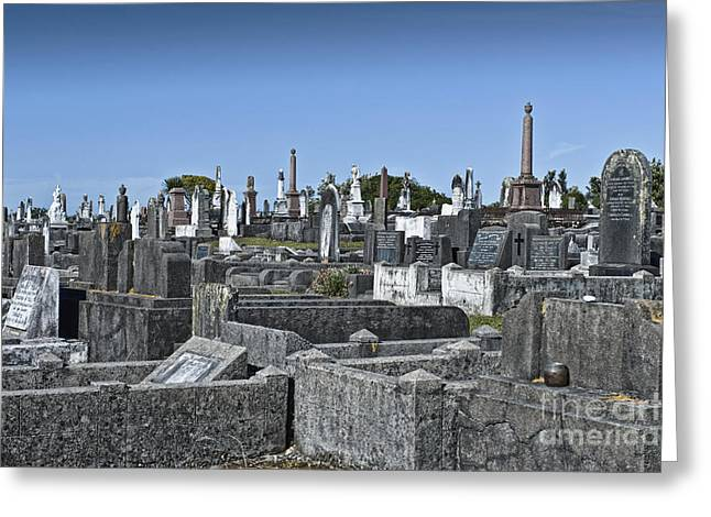Final Resting Place Greeting Cards - Gravestones In Graveyard Greeting Card by Dave & Les Jacobs