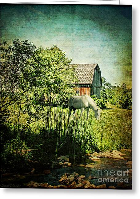 Seasonal Prints Rural Prints Greeting Cards - Grazin in the Grass Greeting Card by Lianne Schneider