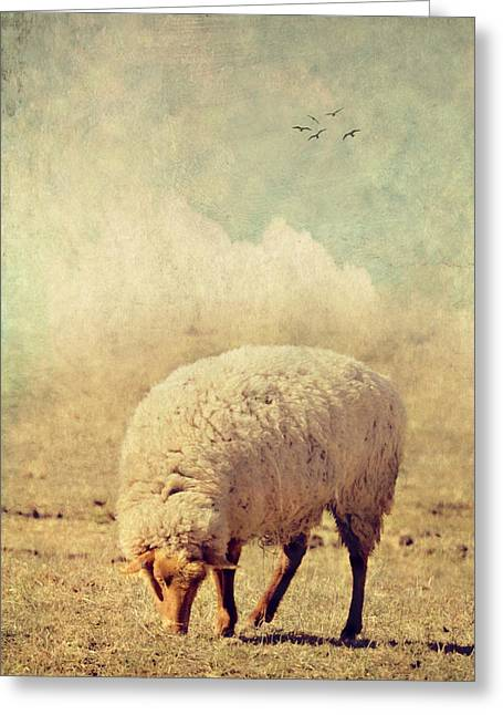 Grazing Sheep Greeting Card by Kathy Jennings