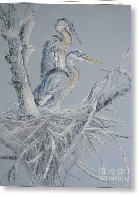 Great Birds Pastels Greeting Cards - Great Blue Heron Nest Greeting Card by Kathryn Yoder