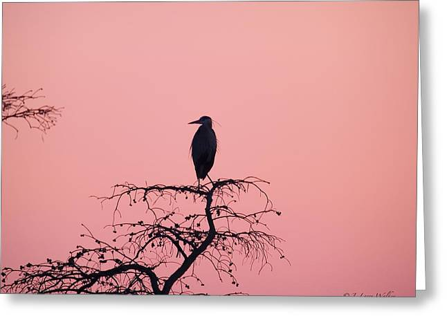 Silhouette Digital Art Greeting Cards - Great Blue Heron Silhouette Greeting Card by J Larry Walker