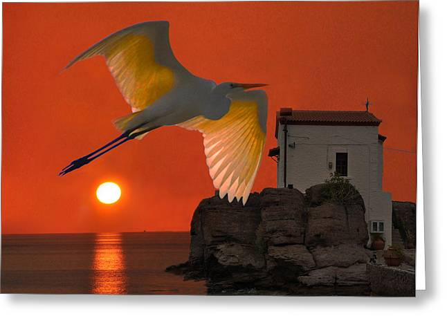 Acroplolis Greeting Cards - Great Egret sunset in Skala Greeting Card by Eric Kempson