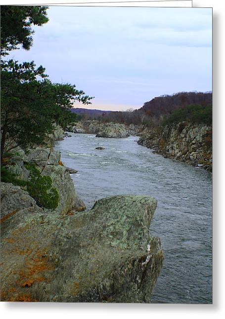 Greatfalls Greeting Cards - Great Falls National Park Greeting Card by Sonya Anthony