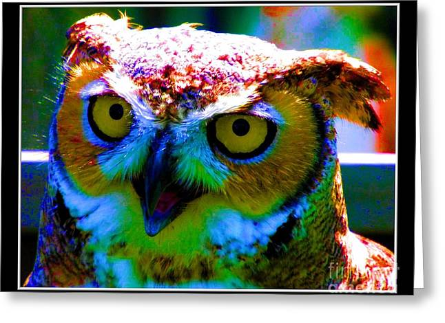 Hawk Creek Greeting Cards - Great Horned Owl with Neon Effect Greeting Card by Rose Santuci-Sofranko