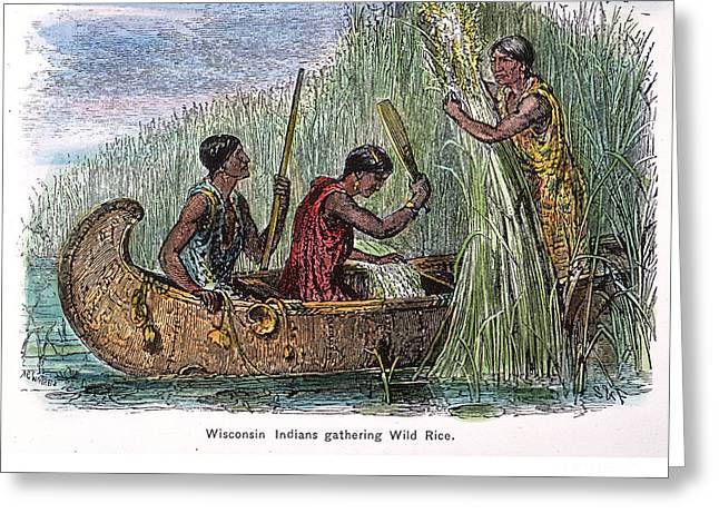 Canoe Photographs Greeting Cards - GREAT LAKES: CANOE, 19th C Greeting Card by Granger