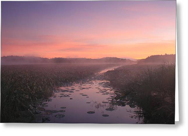 Great Meadows National Wildlife Refuge Dawn Greeting Card by John Burk