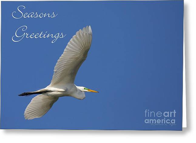 Hanukah Greeting Cards - Great White Egret Holiday Card Greeting Card by Sabrina L Ryan