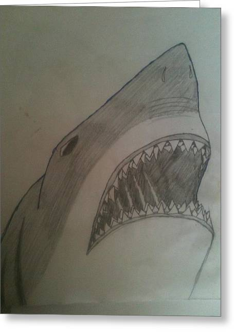 White Shark Drawings Greeting Cards - Great White Shark Greeting Card by Elise Parr