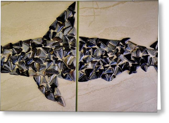 Shark Fossil Teeth Greeting Cards - Great White Shark Greeting Card by Werner Lehmann