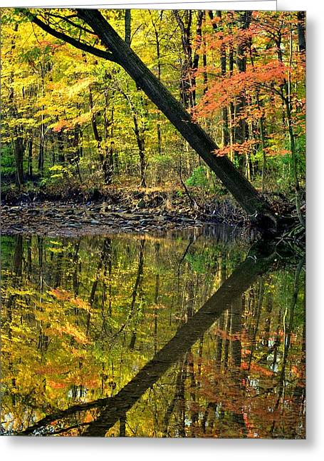 Willow Lake Greeting Cards - Greater Than Greeting Card by Frozen in Time Fine Art Photography