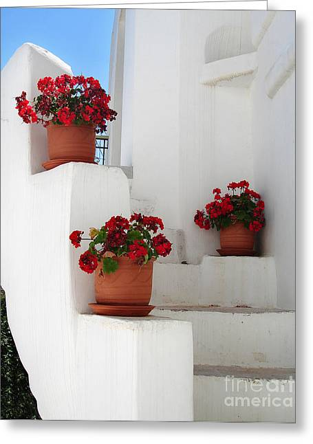 Stucco Greeting Cards - Greek steps  Greeting Card by Jane Rix