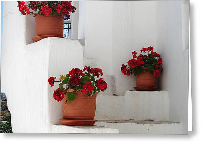 Greek steps  Greeting Card by Jane Rix