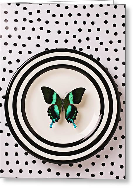 Metamorphosis Greeting Cards - Green and black butterfly on plate Greeting Card by Garry Gay