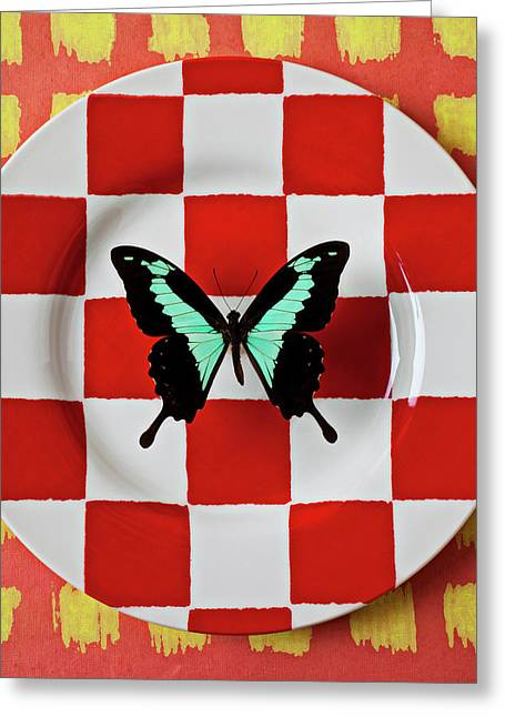 Arthropod Greeting Cards - Green and black butterfly on red checker plate Greeting Card by Garry Gay