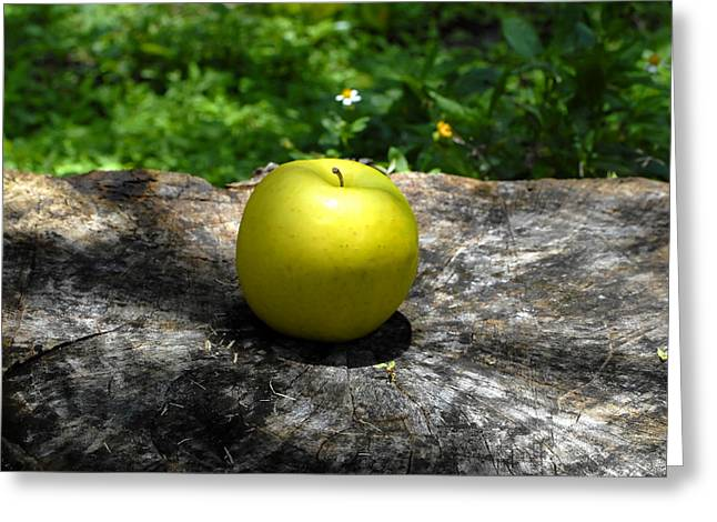 Fruit Tree Art Greeting Cards - Green Apple Greeting Card by David Lee Thompson