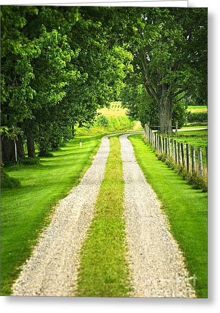 Rural Landscapes Greeting Cards - Green farm road Greeting Card by Elena Elisseeva