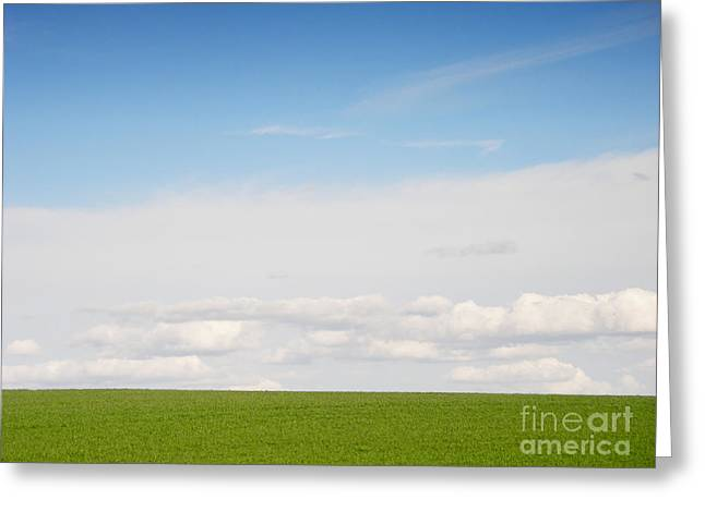 Natural Landscape Greeting Cards - Green Field Greeting Card by Pixel Chimp