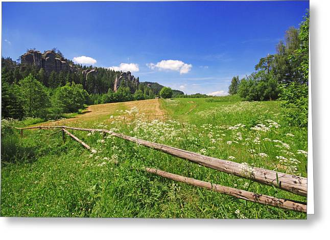 Recently Sold -  - Base Path Greeting Cards - Green Fields Greeting Card by Jaroslaw Grudzinski